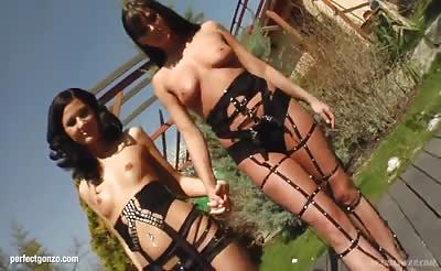 Simona and Lulu shares a load of cum after hardcore sex on