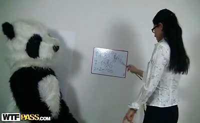 Sexy teacher for horny Panda bear